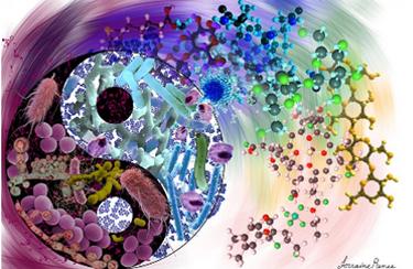 News | BIOM Probiotics | Sarasota | Microbiome's health | Probiotics