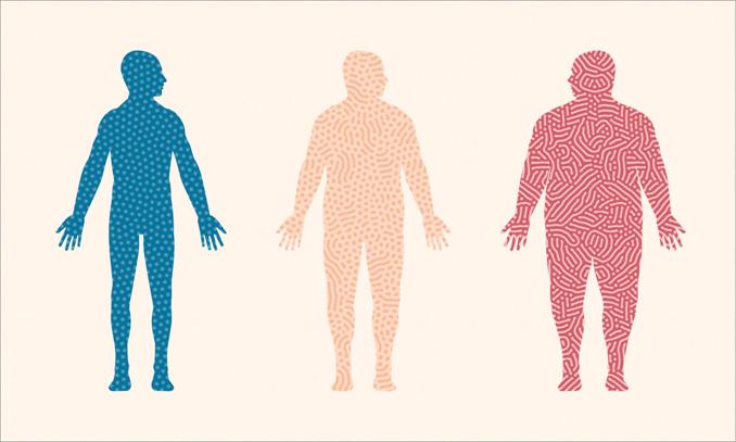 News | BIOM Probiotics | Sarasota | Microbiome's health | Gut Microbiome