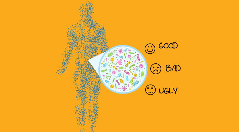 The Good, Bad and Ugly! | Human Gut Microbiome | Biom